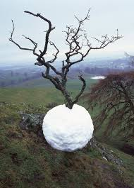 andy goldsworthy 6